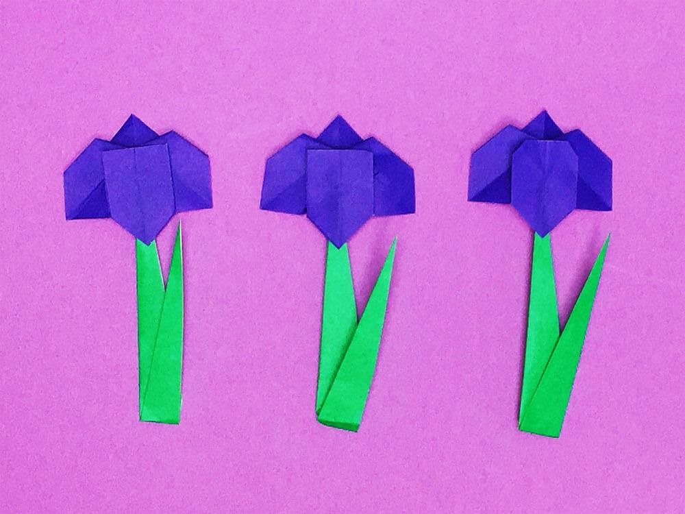 折り紙で折った花菖蒲