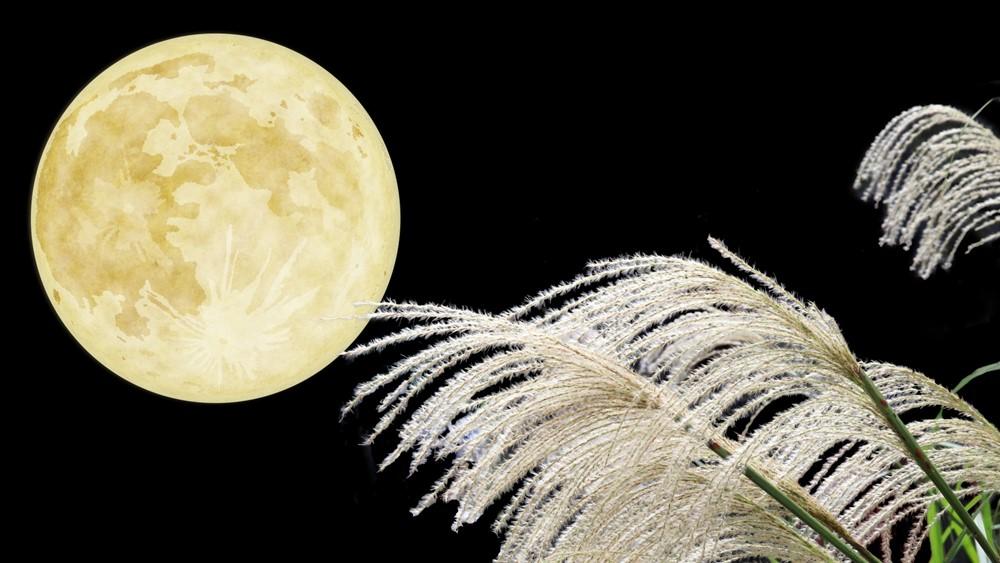 お月見の折り紙